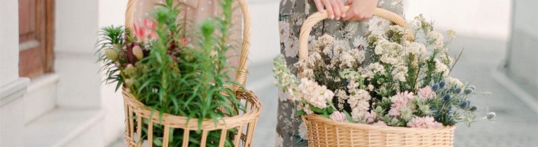 bodas-cadiz-floristeria-cotton-candy